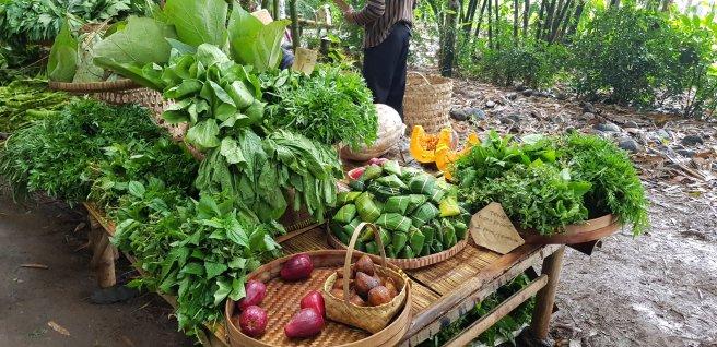 Pedagang sayur mayur dan tempe koro