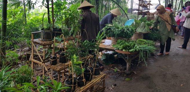 Pedagang tanaman
